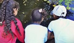 Movimiento Mundial por la Infancia: a 26 años de la CDN
