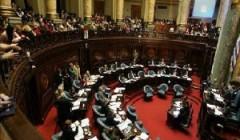 Comisión de Salud del Senado vota hoy ley sobre interrupción del embarazo